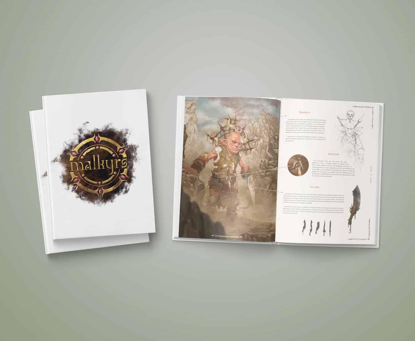 Couverture de l'artbook Malkyrs